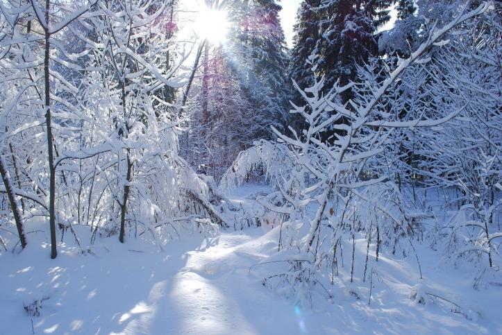 russia_winter